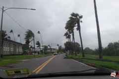 16 - Clearwater after Irma -_